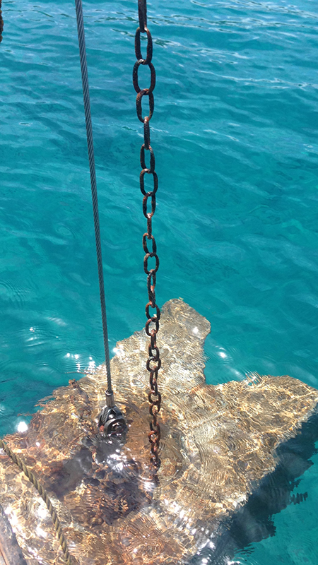 Buoy Chain Replacement